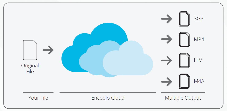 Encoding Platform